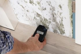 Salubrité des logements : gestion améliorée dans 3 arrondissements